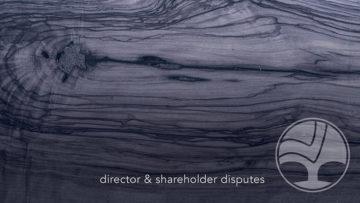 12 Director & Shareholder 800x450