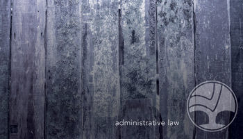13 Administrative 800x450