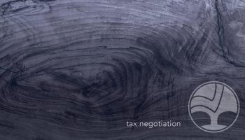 14 Tax Negotiation 800x450
