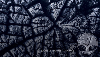 19 Private Equity 800x450