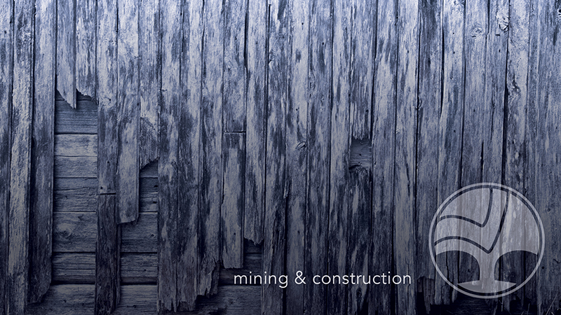 Construction and Mining Law